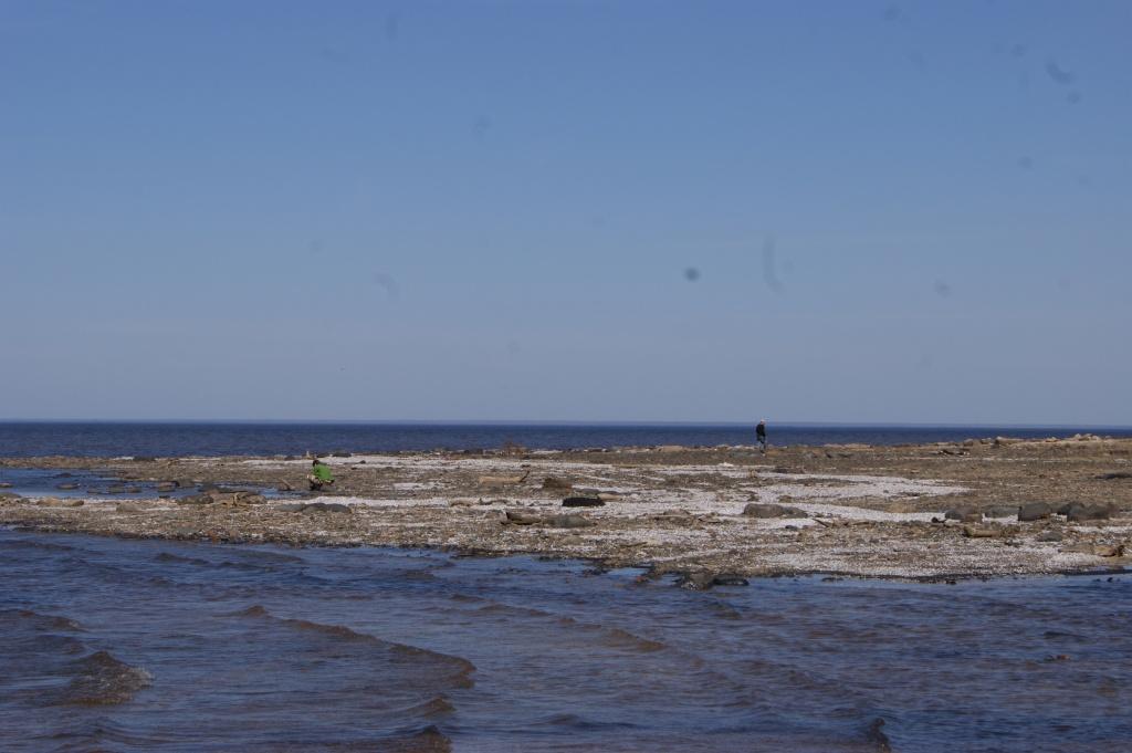 Рыбинское водохранилище.JPG